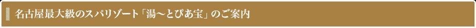 名古屋最大級のスパリゾート「湯〜とぴあ宝」のご案内